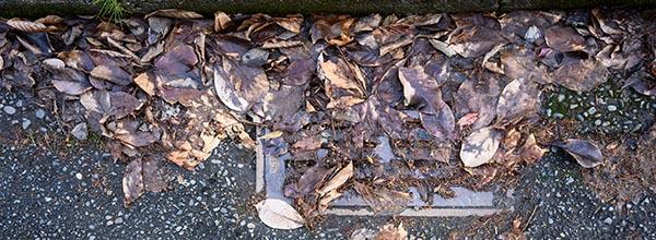 drain inspections invercargill